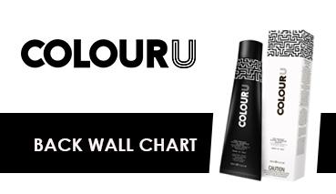 colouru back wall chart